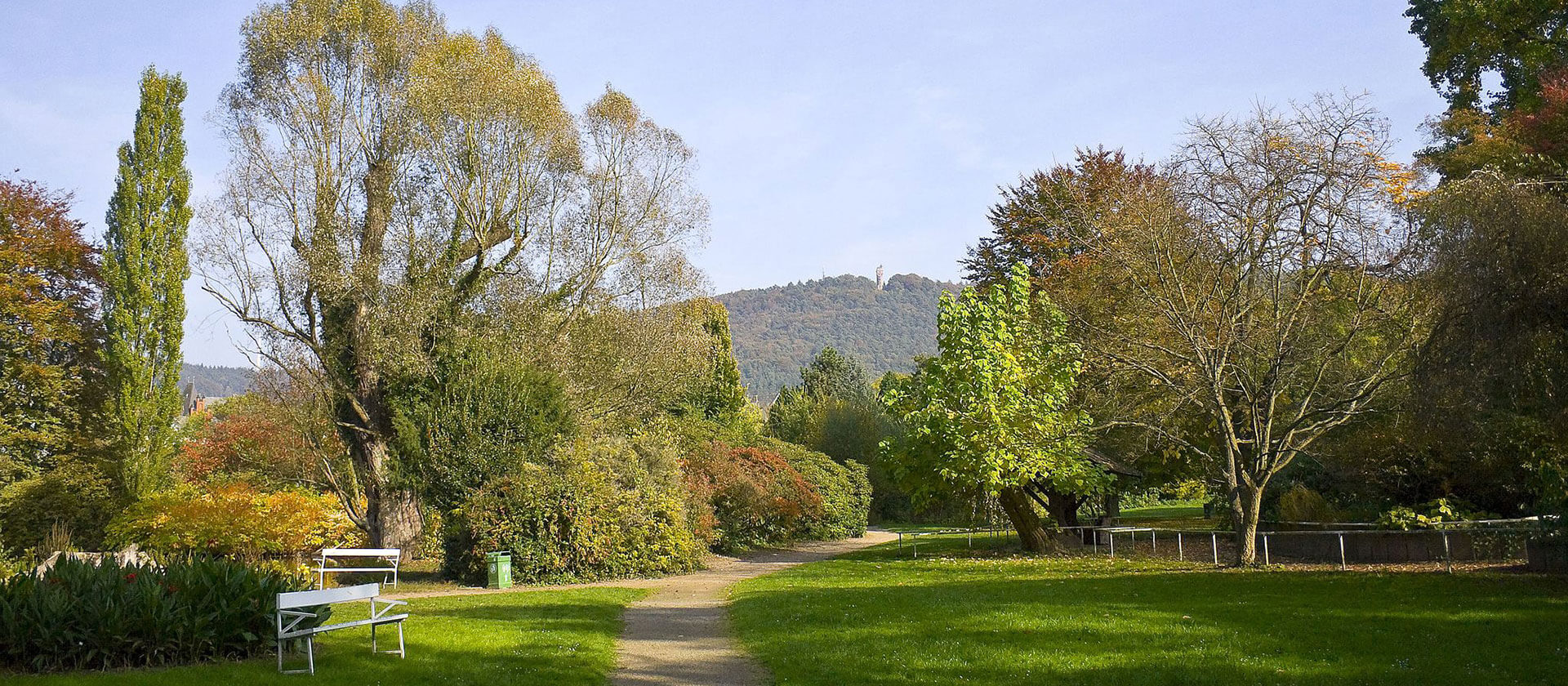 Alter Botanischer Garten Marburg, Credit Willow via Wikimedia