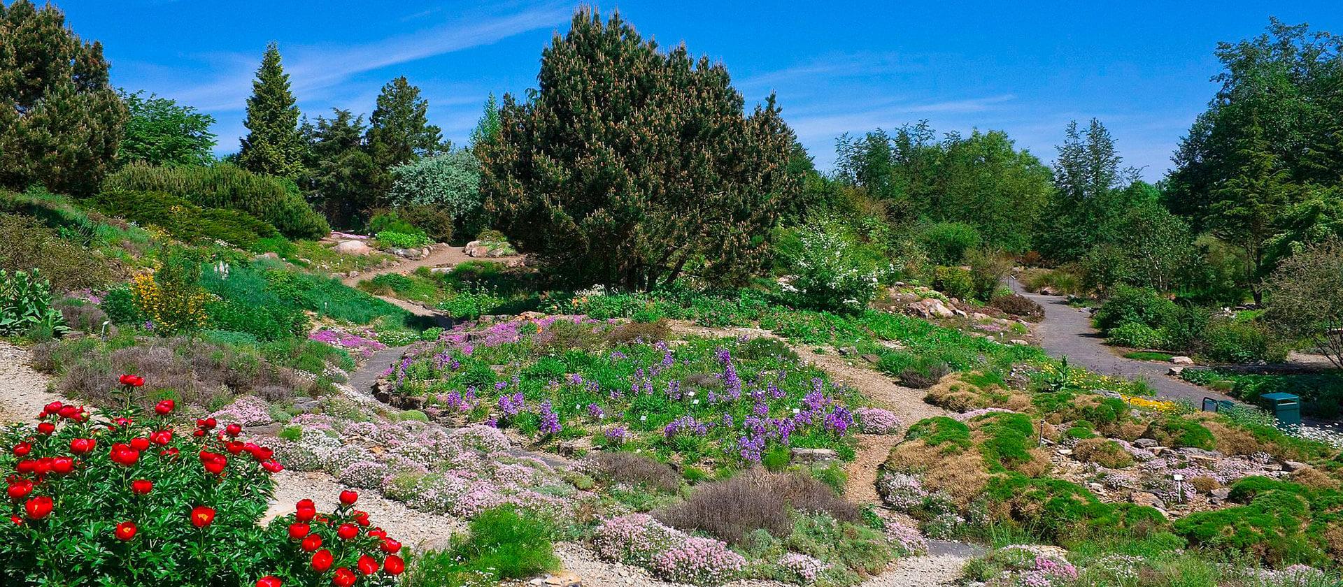 Neuer Botanischer Garten, Credits by Willow via Wikimedia